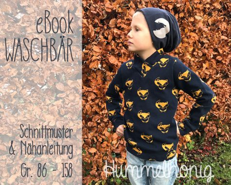Ebook Sweater Waschbär
